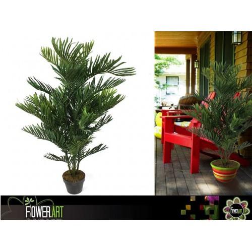 Fern Palm In Pot 140cm