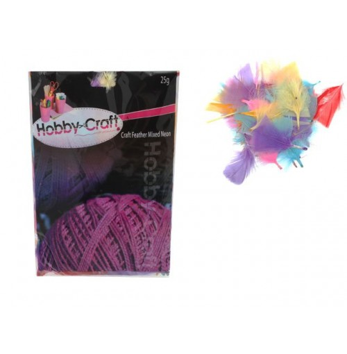 Craft Feathers Mixed Neon Clrs 25g