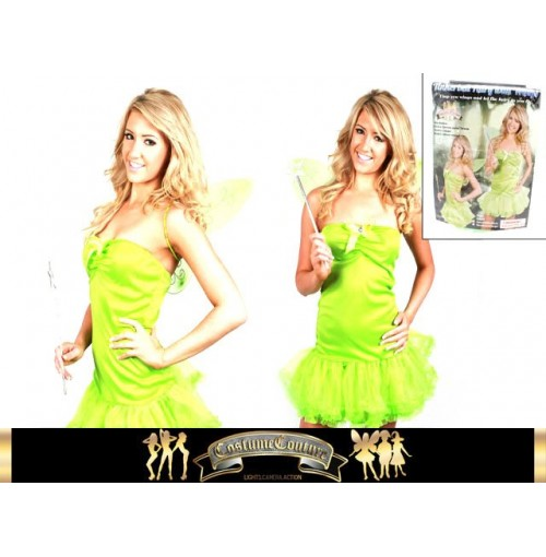 Green Fairy Costume W/ Wings & Wand 2 Sizes