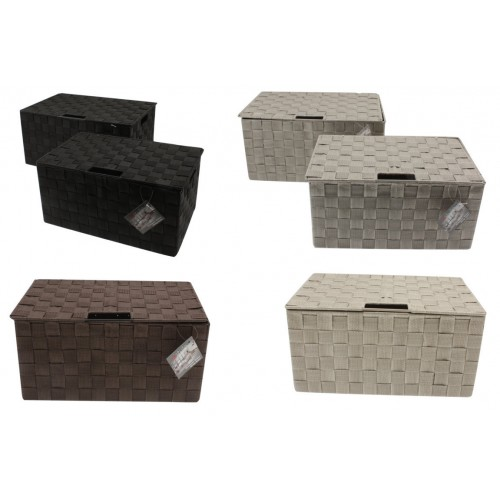 Storage Rect With Lid Webbed S/2