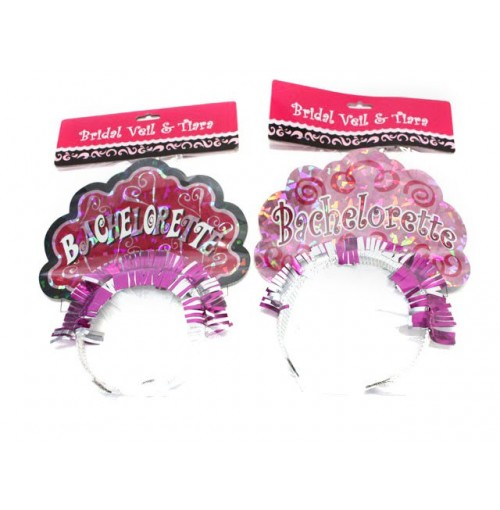 Bridal Veil & Tiara