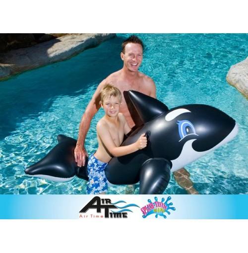 Airtime Whale Rider