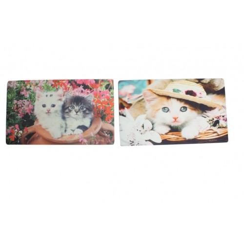 Door Mat Photo Print Cat 4 Asst 45x75cm